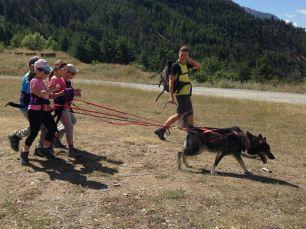 Cani-escursione a Névache