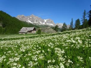 La valle della Clarée : luogo di ripresa di